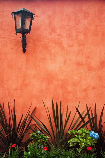 A red colonial wall with a lantern in the upper left. Architecture Background Building Built Structure Colombia Colonial Design Detail Exterior Flower History Lantern Light Multi Colored Nature Outdoors Paint Plant Popayán Red Surface Texture Travel Upper Wall