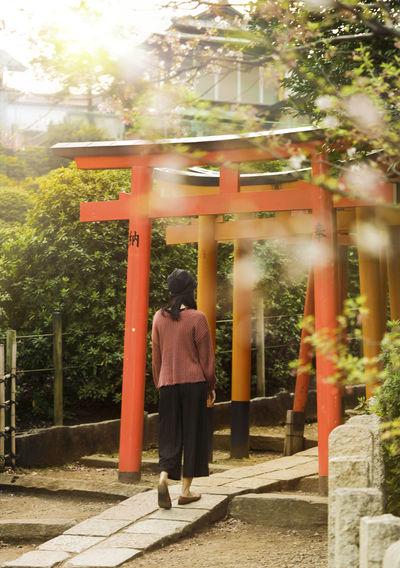 Rear view of man walking in temple