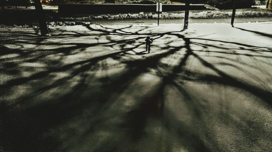 Shadows My Perspective Upcoming  Best New Photos Cool Shadows Casted Award_gallery EyeEm Awareness Unique Beauty Unique Perspectives Blackandwhite Photography Blackandwhite EyeEm Gallery EyeEm Best Shots - Nature Night Photography Different Ways Eye For Art Eyes For Photography Winter Wonderland Different Styles Different Perspective Eyes Of The World Nature_collection Landscape_photography Landscapes With WhiteWall