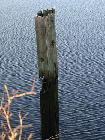 Beauty In Nature Close-up Outdoors Post Tranquility Water Waterfront Wood - Material