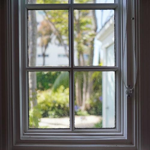 Trees seen through window of house