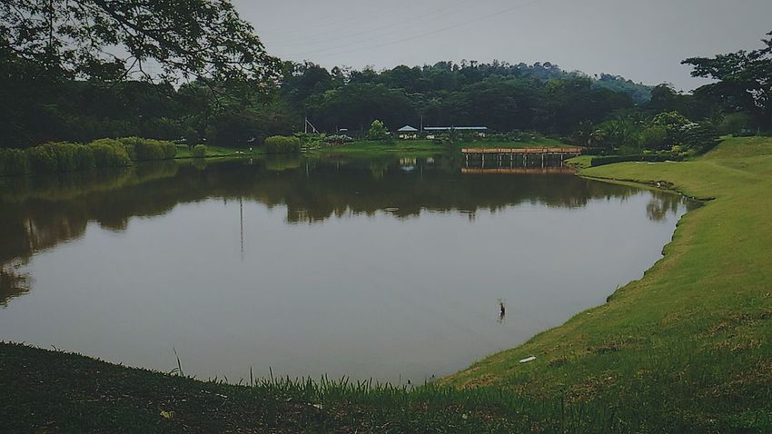 Lake. Reflection Lake Tree Water Outdoors Nature Landscape Beauty In Nature EyeEm Malaysia Asus Zenfonecam Asuszenfone AsusPixelMaster Zenfonephotography Zenfone Photography Zenfoneglobal Zenfonegraphy Asuszenfonemaxphotography Zenfonemax Zenfonemalaysia EyeEm Team EyeEm Best Shots EyeEm Gallery Eyeem Photography