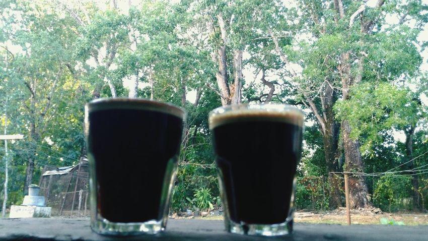 Enjoyed coffe at backyard near teakwood forest in Atambua, Timor island, Indonesia Coffee Time Coffee Atambua INDONESIA