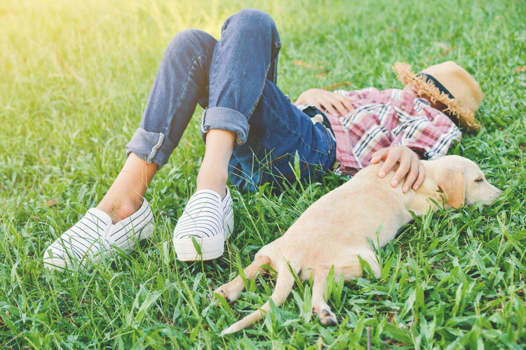 High angle view of girl with puppy sleeping on grass at park