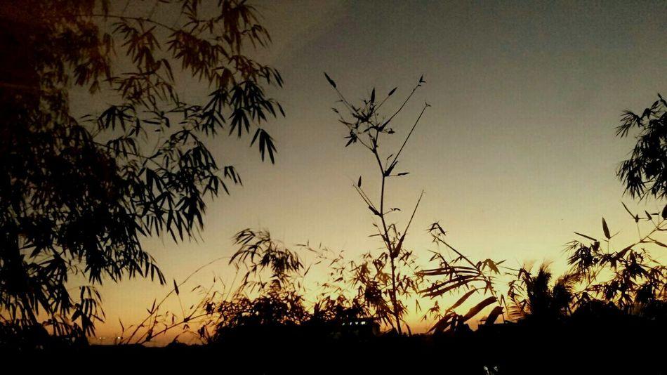 Sunset Sunset Silhouettes Eyemnaturelover Popular Photo Nature On Your Doorstep Landscapes Beautiful Surroundings Landscape_photography