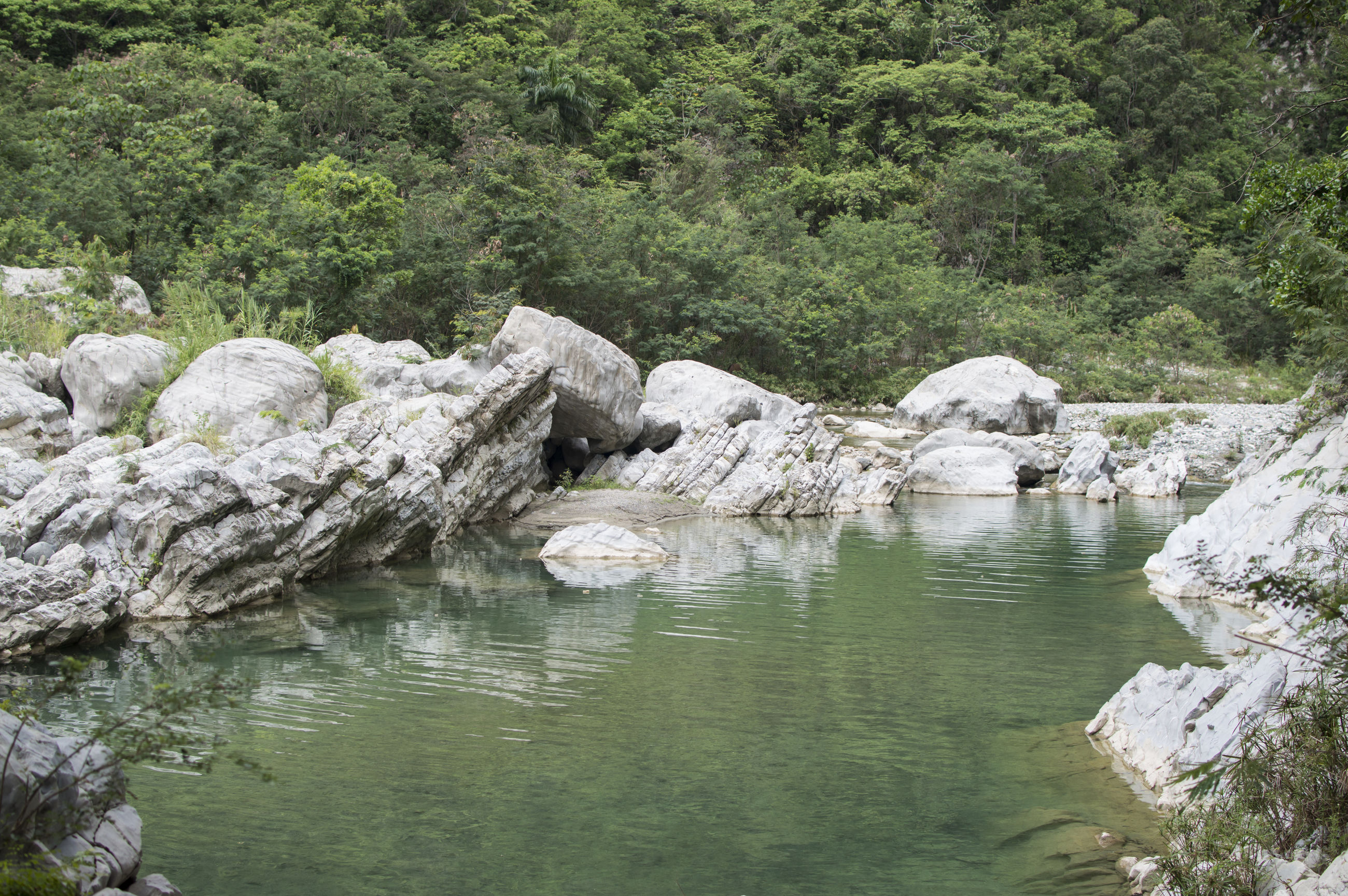 nature, rock - object, tree, water, outdoors, tranquil scene, no people, day, river, scenics, tranquility, beauty in nature, forest, sky