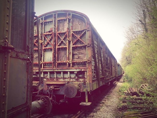 Transportation Rail Transportation Train - Vehicle Railroad Track Abandoned Outdoors Belgian Train Stations Time Railroad Track History IPhone 6 📷