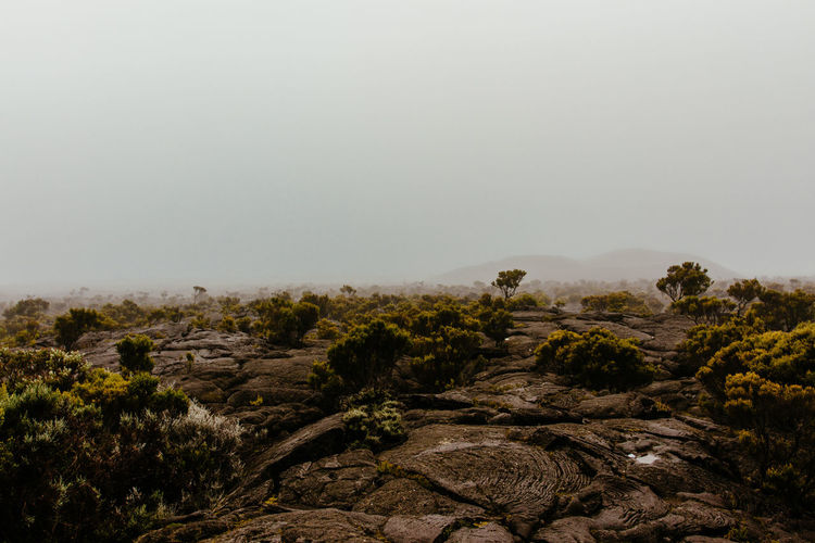 Clear Sky Beauty In Nature Climate Day Environment Fog Landscape Lava Field Lava Rocks Mist Misterious Misty Morning Nature No People Non-urban Scene Outdoors Piton De La Fournaise Scenics - Nature Sky Tranquil Scene Tranquility Volcanic  Volcanic Landscape Volcanic Rock Volcano