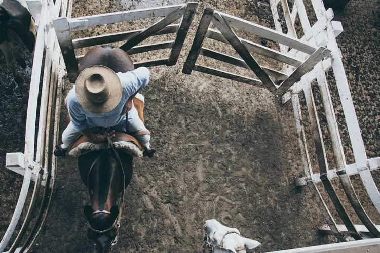 High Angle View Of Cowboy Riding Horse At Stable