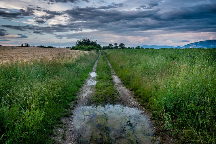 Cloud - Sky Sky Plant Landscape Environment Scenics - Nature Tranquil Scene Grass Beauty In Nature Tranquility Field Land Nature Growth No People Green Color Non-urban Scene Day Rural Scene Water Outdoors Trail