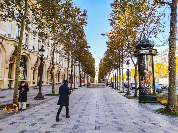 People walking on footpath amidst trees in city