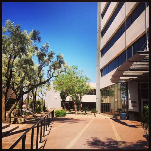 Very peaceful... Who knew the IRS offices could bring tranquility. #doinwork #RAILmesa Doin Work RAILmesa Livable Communities Coalition General Plan