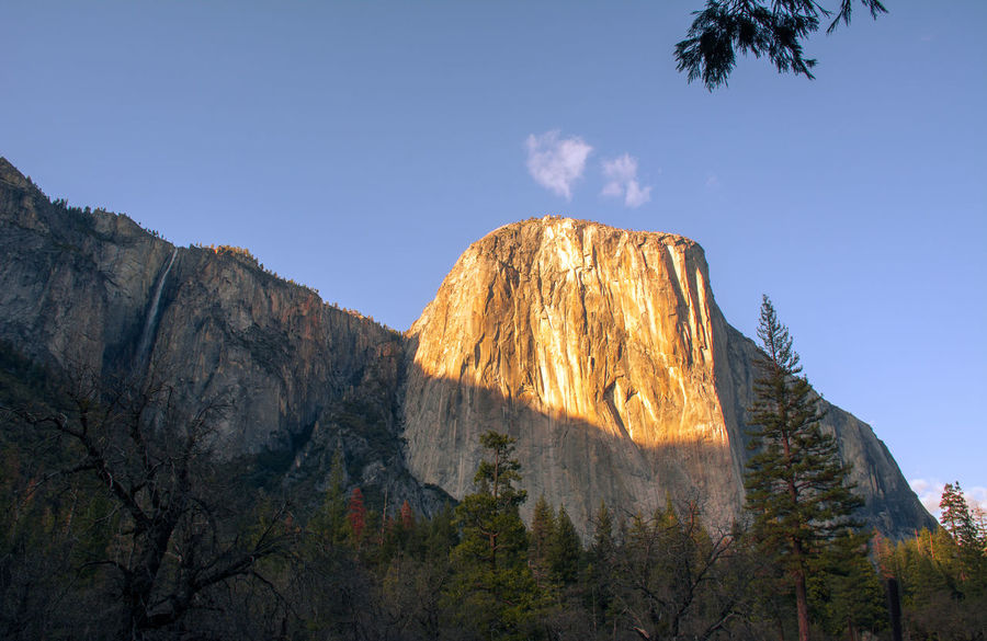 El Capitan Beauty In Nature Clear Sky Cliff Elcapitan Escape Geology Idyllic Low Angle View Mountain Nature Non-urban Scene Physical Geography Rock Formation Scenics Tranquil Scene Tree Yosemite National Park