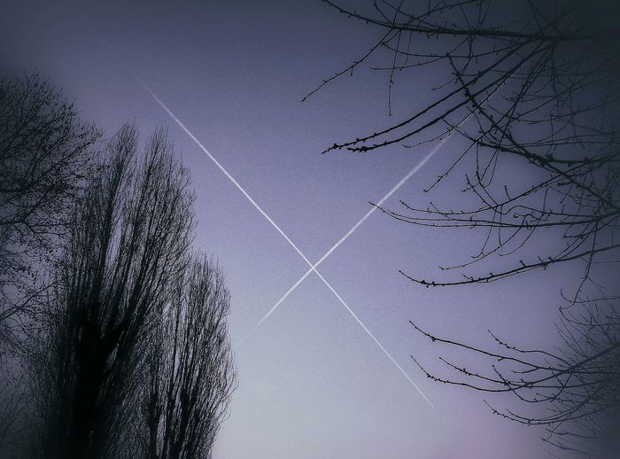 Altered Perceptions The Great X In The Sky Lookingup Monochrome