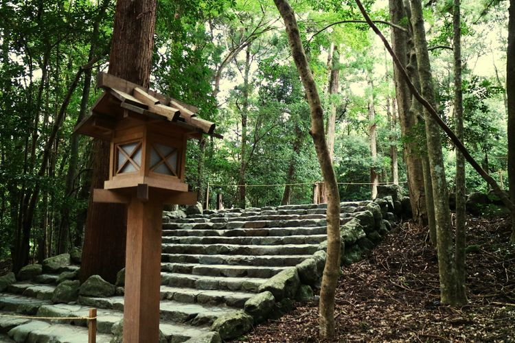 Grand Shrine Of Ise Naiku Mie Japan Nature Approach To Shrine Holiday Nature Upstairs