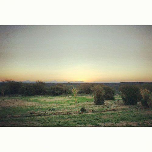 Landscape . Sunset at the Travel Road from madinah madina to jeddah saudi_arabia saudiarabia. Taken by my sonyalpha dslr A200. غروب الشمس طريق سفر المدينة_المنورة المدينةالمنورة جدة السعودية