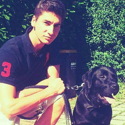 Dexter #dog #labrador i miss u Dog Labrador