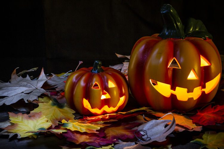 High angle view of illuminated jack o lanterns and autumn leaves against black background