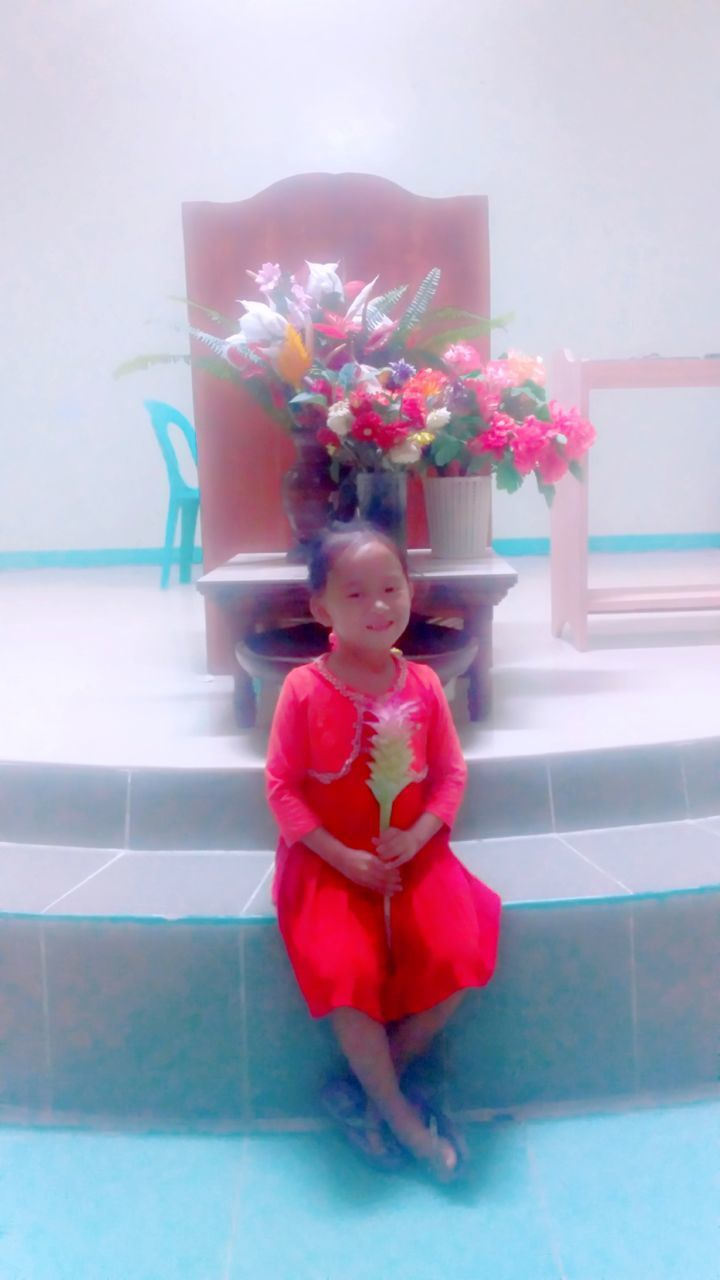 childhood, one person, flower, child, real people, full length, flowering plant, indoors, cute, leisure activity, plant, front view, lifestyles, innocence, looking, women, standing, nature, flooring, flower head
