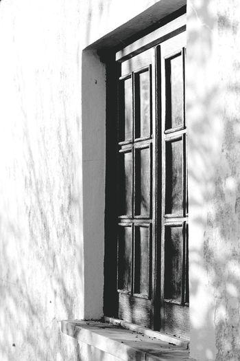 Window No