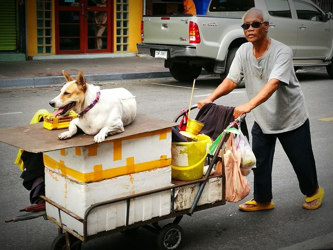 The man, the dog and his trolley Pet Owner Dog Pets Animal Domestic Animals Streetphotographer Street Photography Streetphotography City Life Street Bangkok Streetphotography Thailand Bangkok Colour Photography Color Photography Eyeemphotography EyeEm Gallery EyeEmBestPics EyeEm Best Shots EyeEm Traveling Home For The Holidays BYOPaper! Pet Portraits