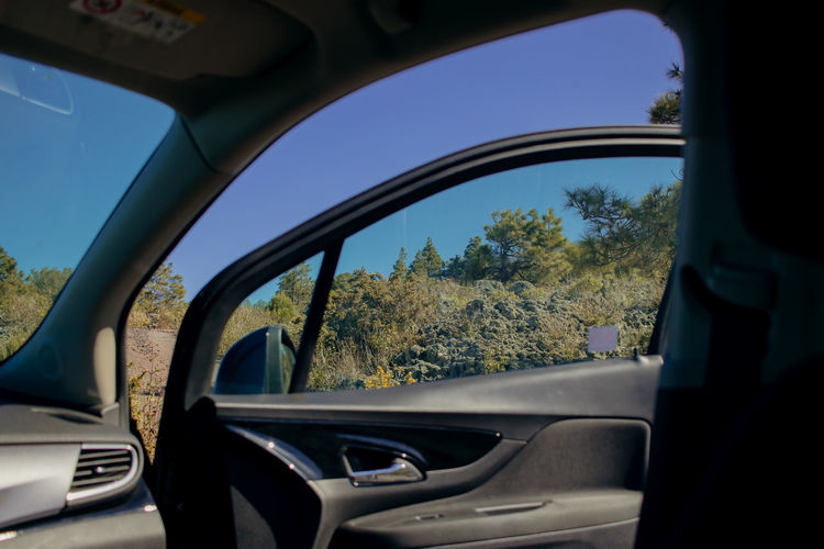 Window to paradise Mode Of Transportation Motor Vehicle Car Transportation Land Vehicle Plant Tree Day No People Glass - Material Transparent Vehicle Interior Nature Car Interior Sky Close-up Indoors  Steering Wheel Reflection