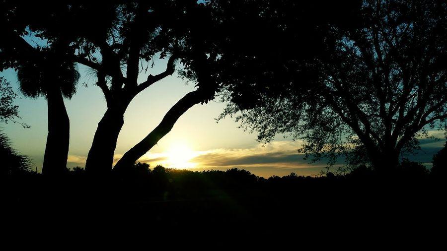 Sunset last night. Just beautiful. Sunset #sun #clouds #skylovers #sky #nature #beautifulinnature #naturalbeauty #photography #landscape EyeEm Best Shots EyeEm Gallery KjPhotography