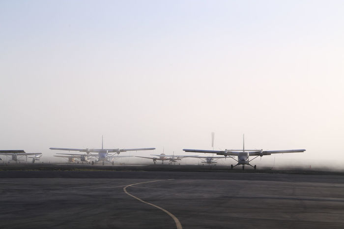 Air Vehicle Aircrafts Airplanes Airport Runway California Early Morning Flying Misty Misty Morning Mode Of Transport Morning Mist No People Outdoors Tranquility Transportation Twin Otters