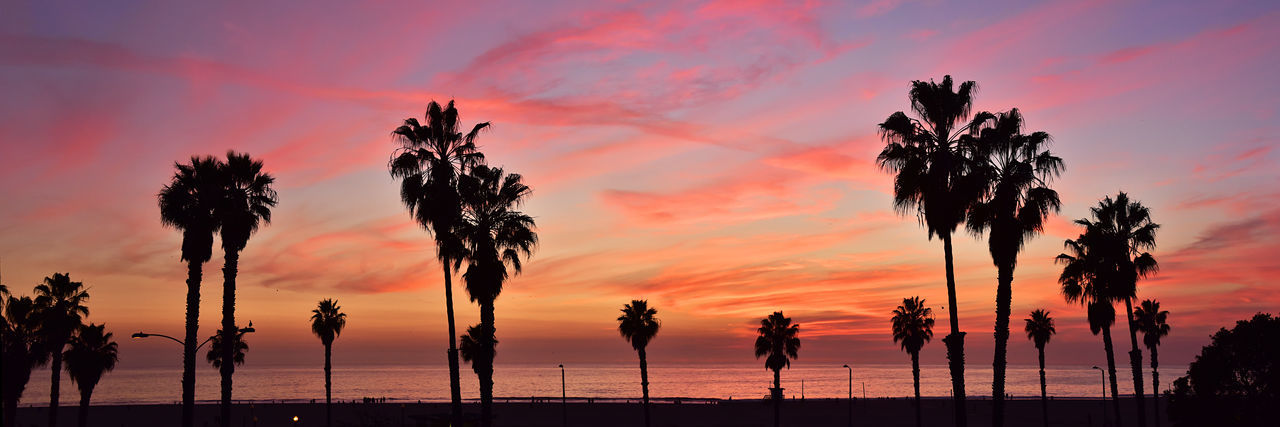 Beach Life Orange Clouds Panorama Panoramic Sunset Silhouette Beach Beauty In Nature Cloud - Sky Day Nature No People Outdoors Palm Tree Panoramic Photography Scenics Sea Silhouette Sky Sunset Tranquility Tree