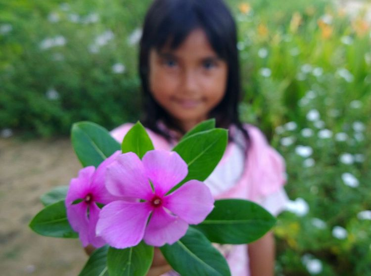 """just for you.."" Kidsphotography Child Smile Cute Flower Front View Black Hair Nature People Close-up Plant Nature Growth Flower Head INDONESIA Indonesian Street (Mobile) Photographie"