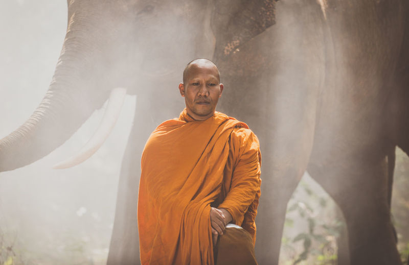Monk standing by elephant at forest