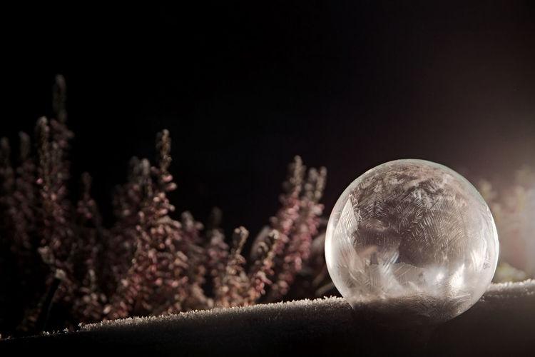 Black Background Frozen Soap Bubble Gefrorene Seifenblase Ice Nature No People Seifenblase Soapbubble Winter First Eyeem Photo EyEmNewHere