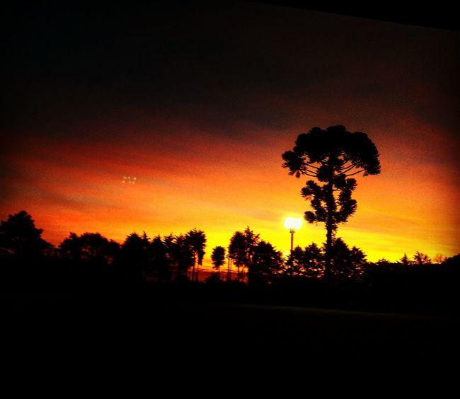 Brasil ♥ Sunset Ovine UFO-Unseen Foodie Organization