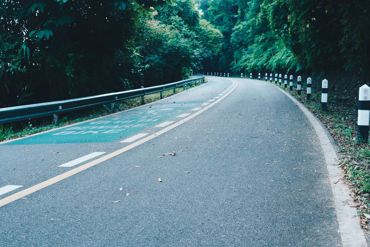 Empty road amidst trees in city