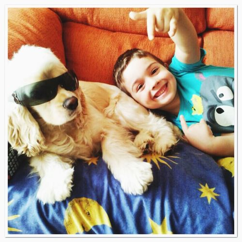 Rock Stars Hello World Perros&niños Enjoying Life Together Forever Cockerspaniel Perro FUNNY ANIMALS