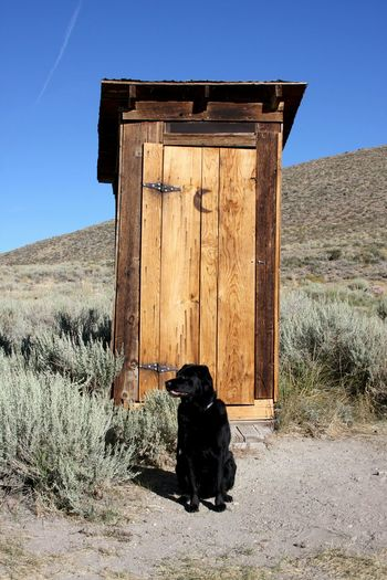 Guard the door.