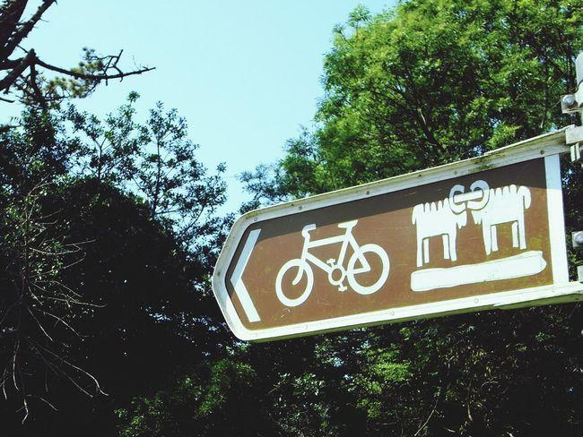 Cycleway Cycleway Directional Sign Sheepsheadway Wildatlanticway Ireland