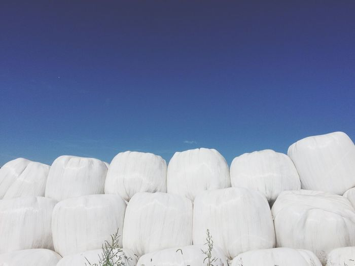 Low angle view of marsh mallow structure against clear sky