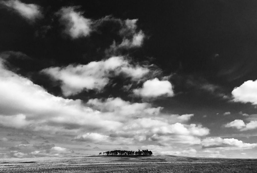 Cloud - Sky Sky Scenics Outdoors Tranquility No People Beauty In Nature Black and white Mono