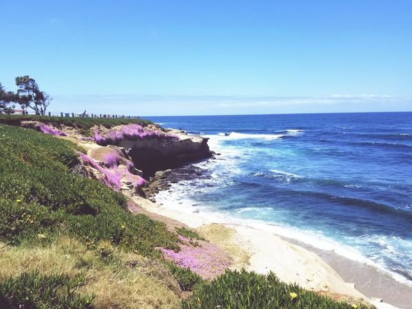 By the Cove Sea Water Horizon Over Water Beauty In Nature Nature Scenics Wave Sky Outdoors Flower Beach