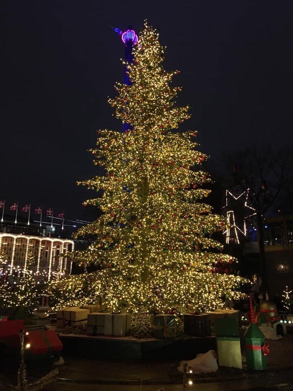 ILLUMINATED CHRISTMAS TREE AGAINST SKY AT NIGHT DURING AUTUMN