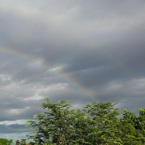 Lovely... :) Rainbow