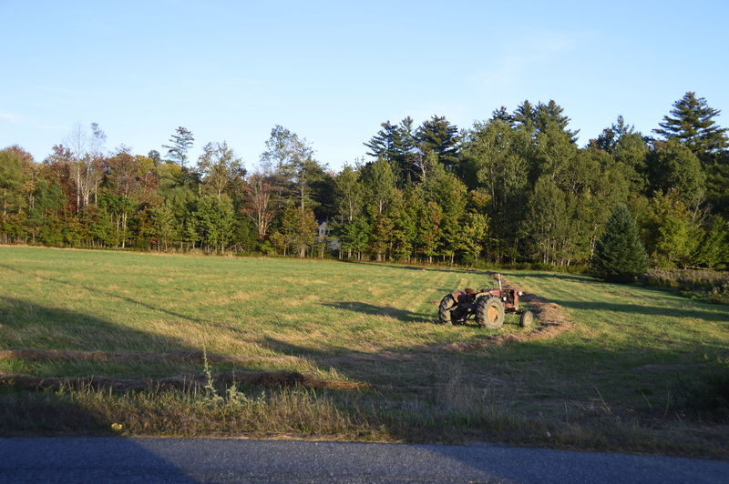 Tractor Beauty In Nature Field Grass Green Color Landscape Nature No People Outdoors Red Tractor Tractor In Field Tree Vermont