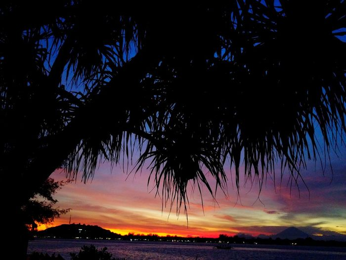 The sunset on Gili T from Gili Air. Stunning. Night Sky Nature Outdoors Beauty In Nature Scenics Tree Sea Landscape Beach EyeEmNewHere Dramatic Sky Tranquil Scene Water SunsetSilhouette Vacations Travel Destinations Palm Tree Star - Space No People Astronomy Milky Way Galaxy