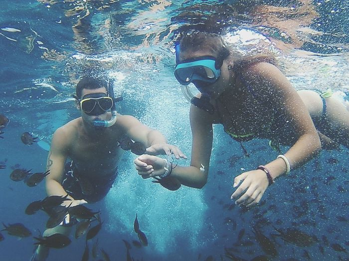 Snorkel Fishes Sea Nature Swimming Holiday Summer Taking Photos Excercising Enjoying The Sun