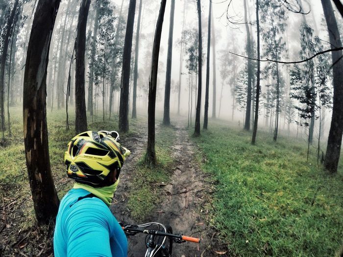 Landscapes Landlovers Landscape_Collection Landscapephotography Lifestyles Outdoors Forest Cycling Bicycle Nature Sunset Landl Sunset_collection Winter Wintertime