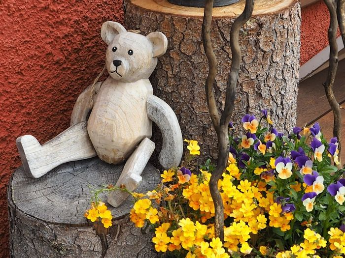 Always Be Cozy Bear Flower My Year My View Present Still Life Still Life Photography Teddy Bear Treescollection Wodden Texture Christmastime Christmas Exploring Style Handmade For You Lieblingsteil Art Is Everywhere