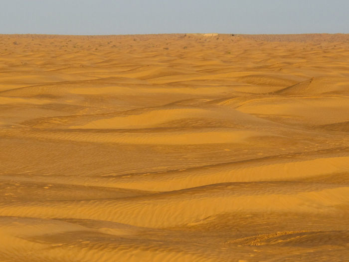 Tunisia travel holidays Scenics - Nature Landscape Land Climate Sand Tranquility Desert Tranquil Scene No People Arid Climate Environment Non-urban Scene Beauty In Nature Nature Pattern Sand Dune Sky Remote Day Natural Pattern Outdoors Atmospheric
