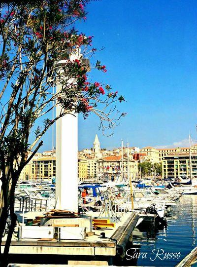 Marseille Marsiglia France Francia Cruise Trip Seaside Flower Trees Keep Calm And Snap On