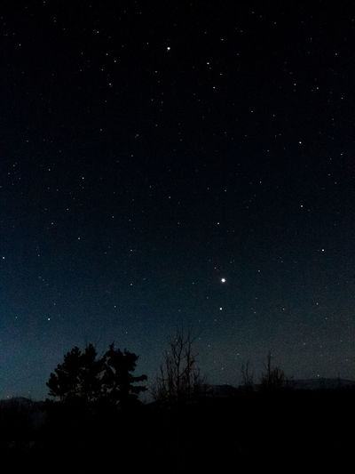 first daylight Astronomy Beauty In Nature Canada Clear Sky Constellation Darkness Infinity Low Angle View Nature Night No People Outdoors Scenics Silhouette Sky Space And Astronomy Star Star - Space Star Field Tranquil Scene Tree Treeline Wildernness Yukon